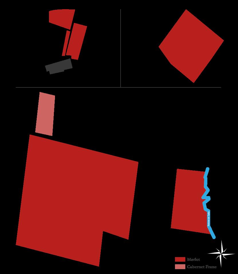 Plan du vignoble