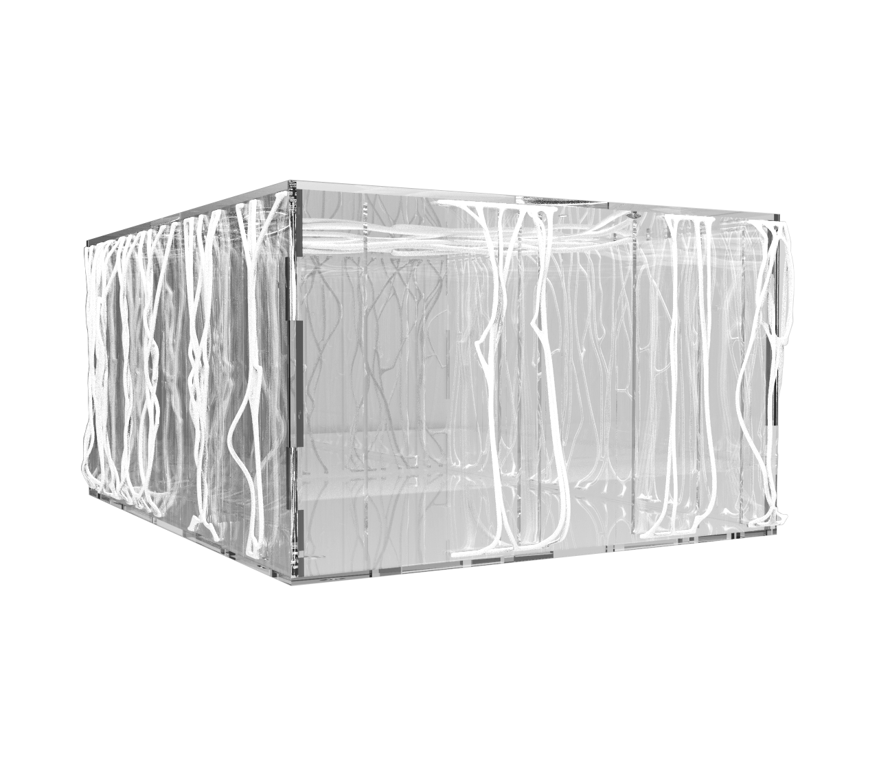 box 2017 - anna janiak studio image 3
