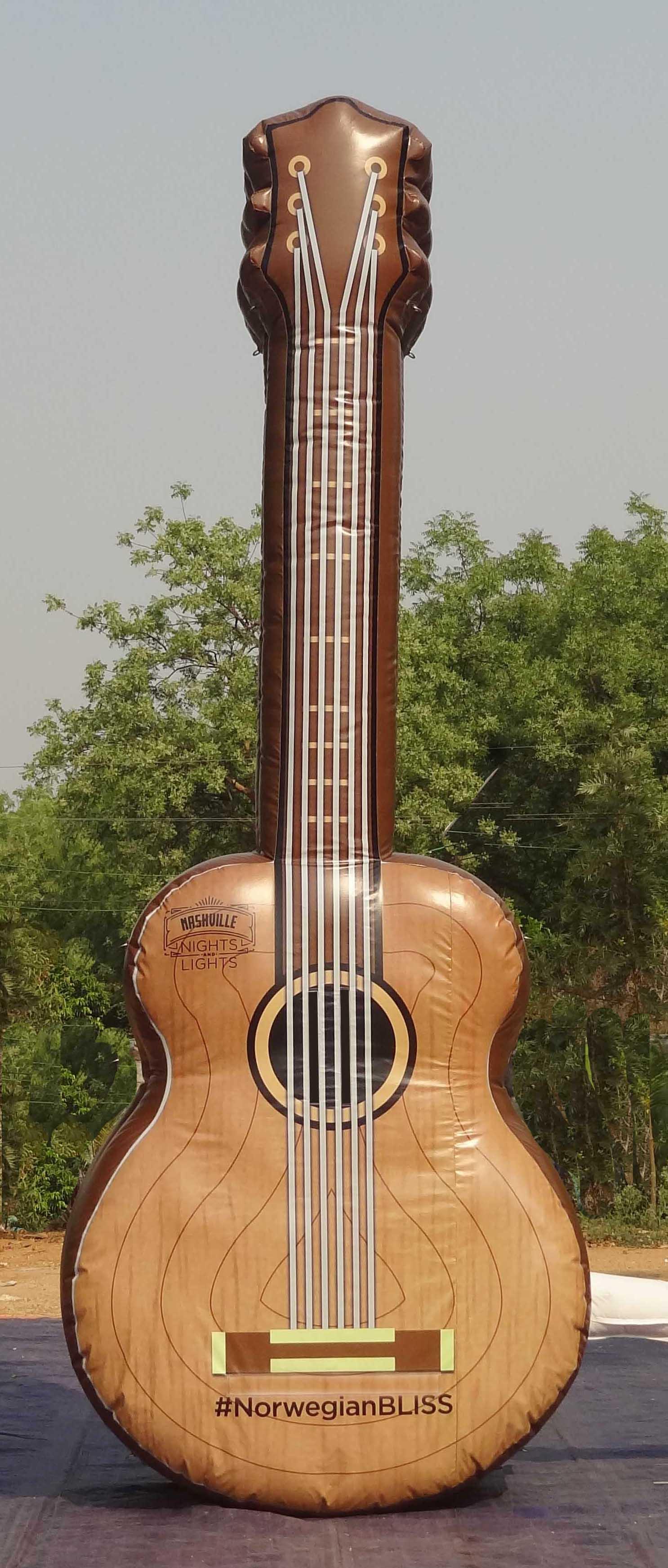 Guitar-shopped-.jpg