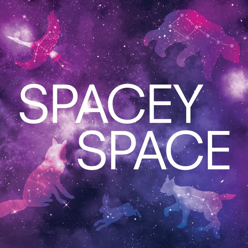 9T_windows_SPACE_med-square.jpg