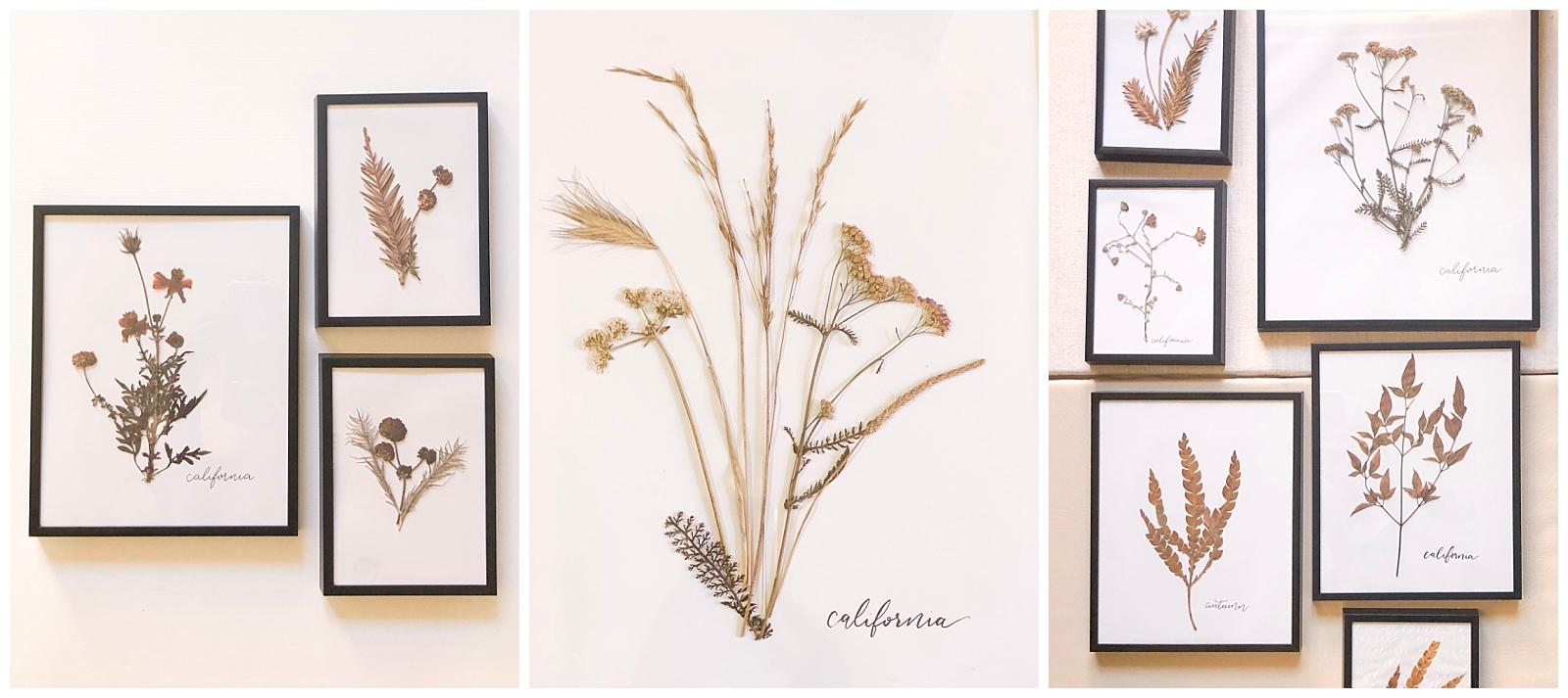 Shop Pressed Blooms -