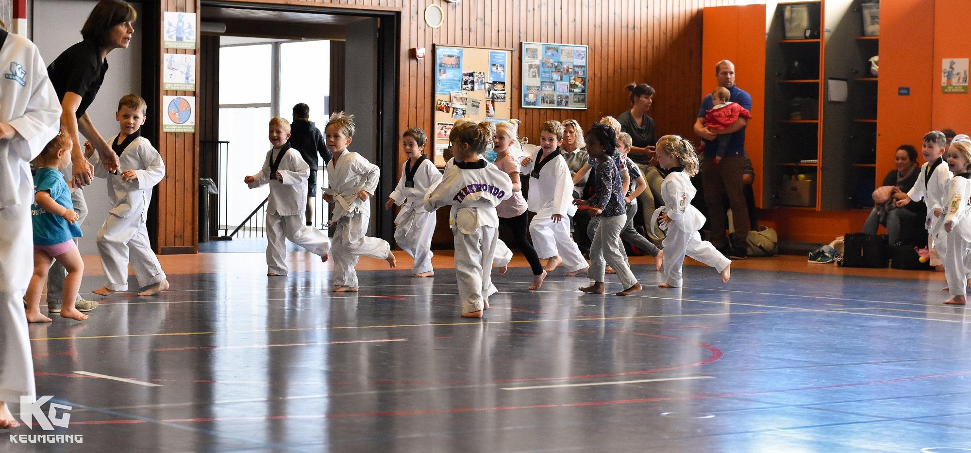 2.1. Wat is taekwondo.jpg