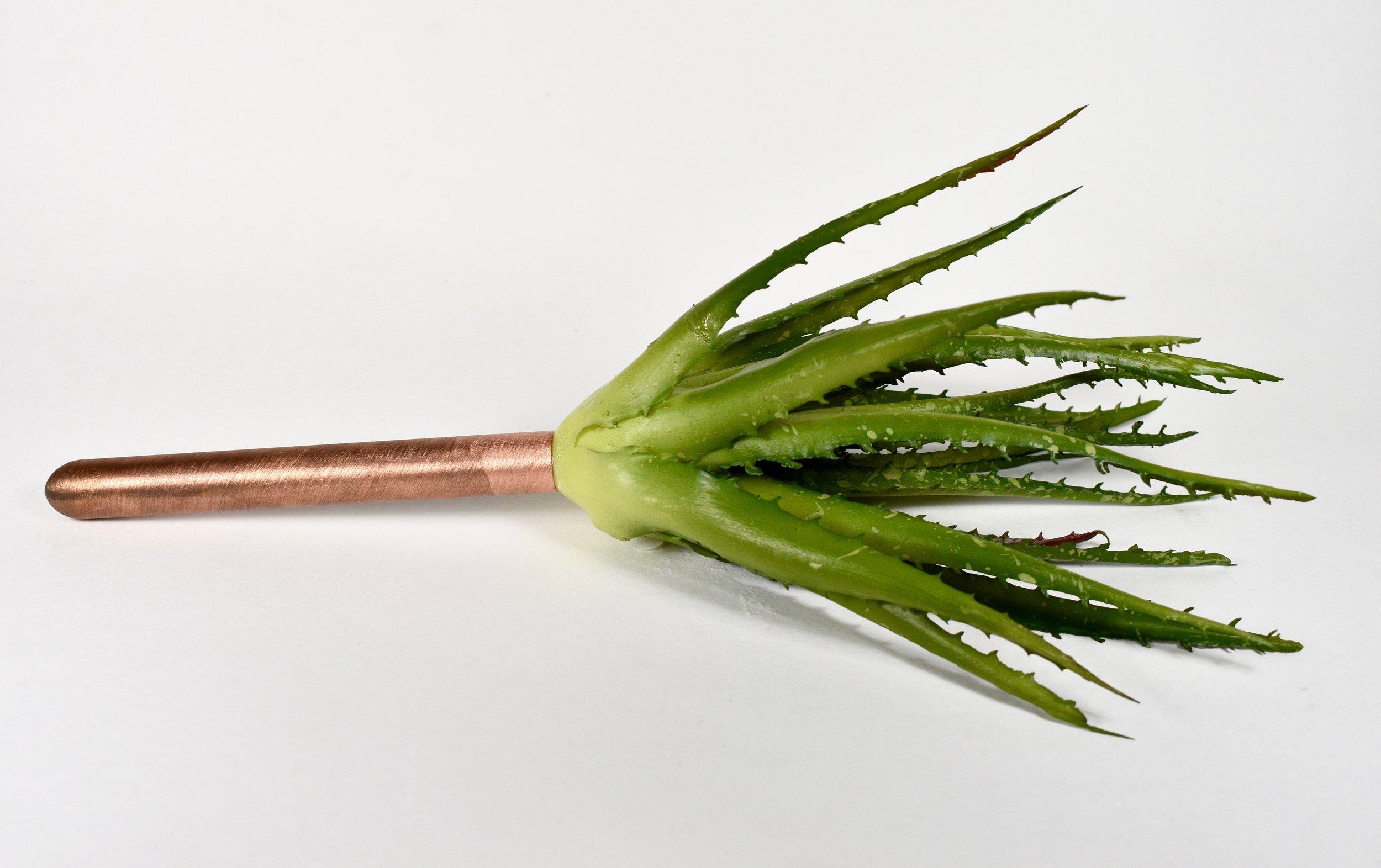 Succulent Swatter • Copper