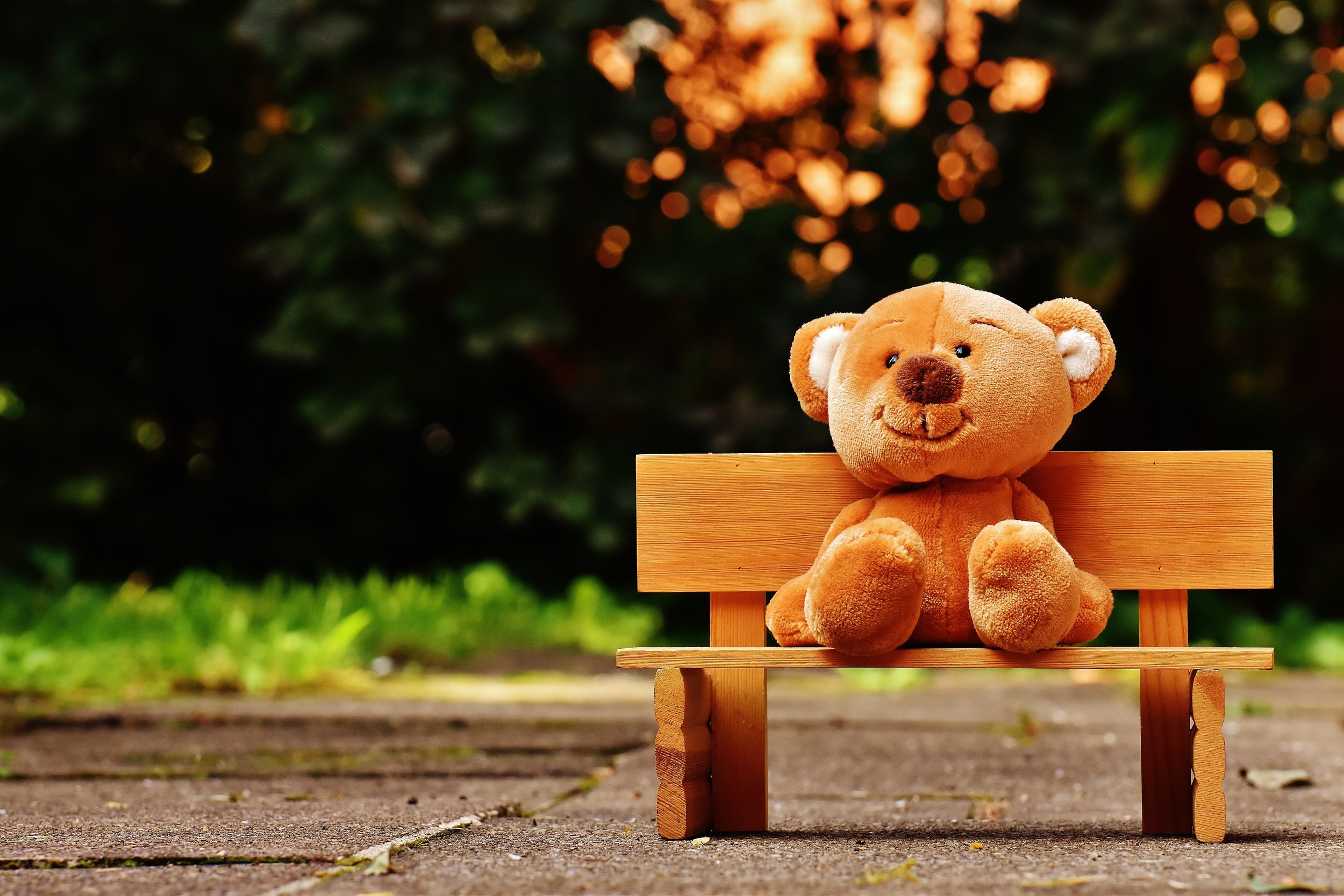 bear-bench-child-207891.jpg
