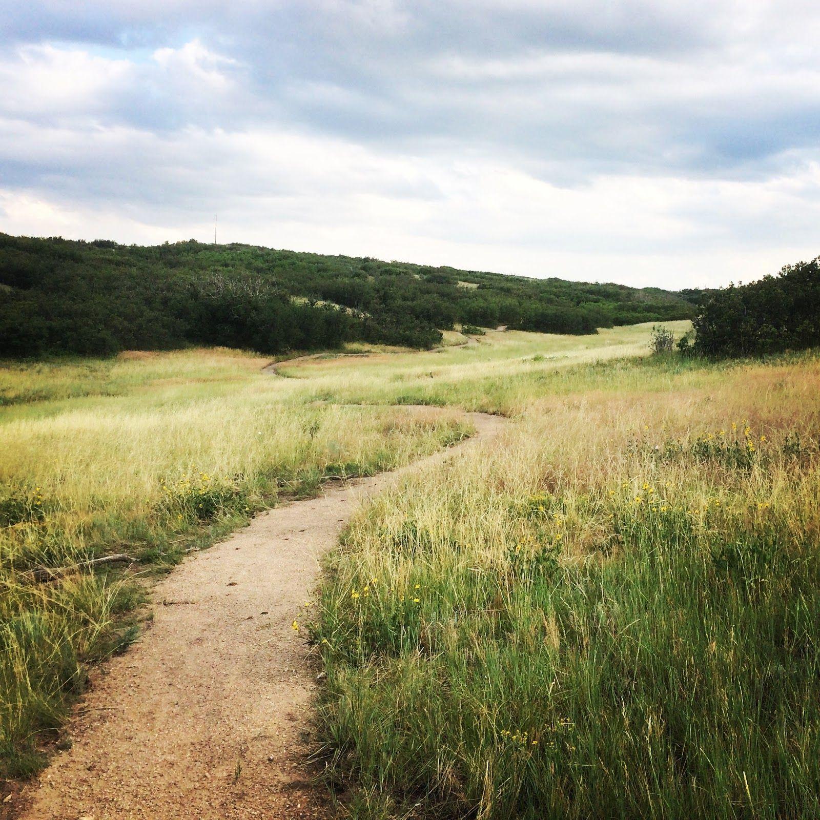 Multi-use Trail Design   Elevated Trail Design