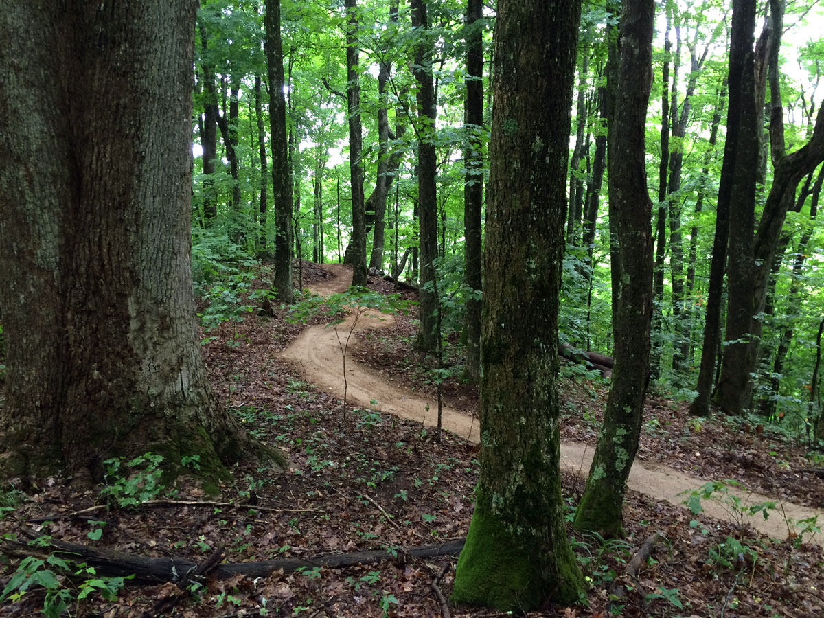 NC Trail Building | Elevated Trail Design