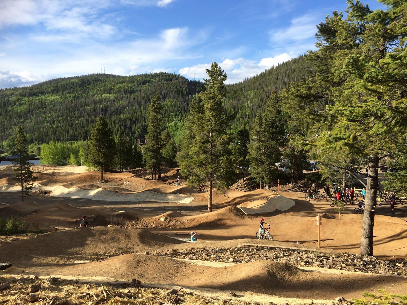 Bike Park Design Build   Elevated Trail Design
