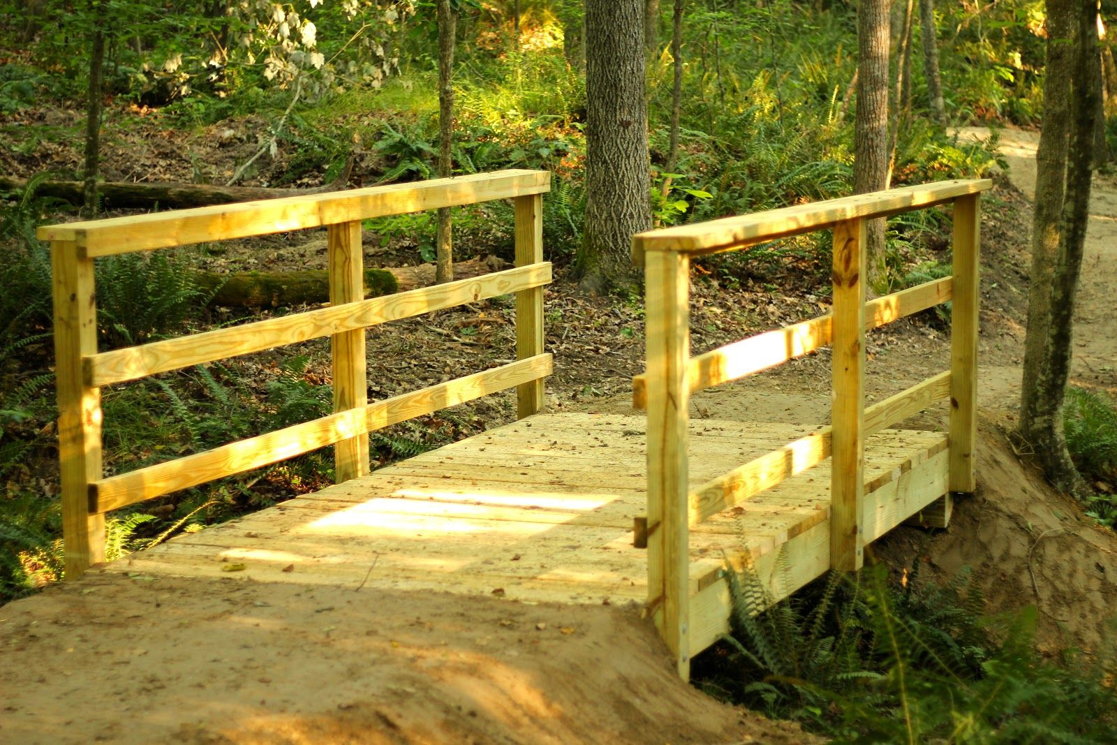 Hiking Trail Construction | Elevated Trail Design