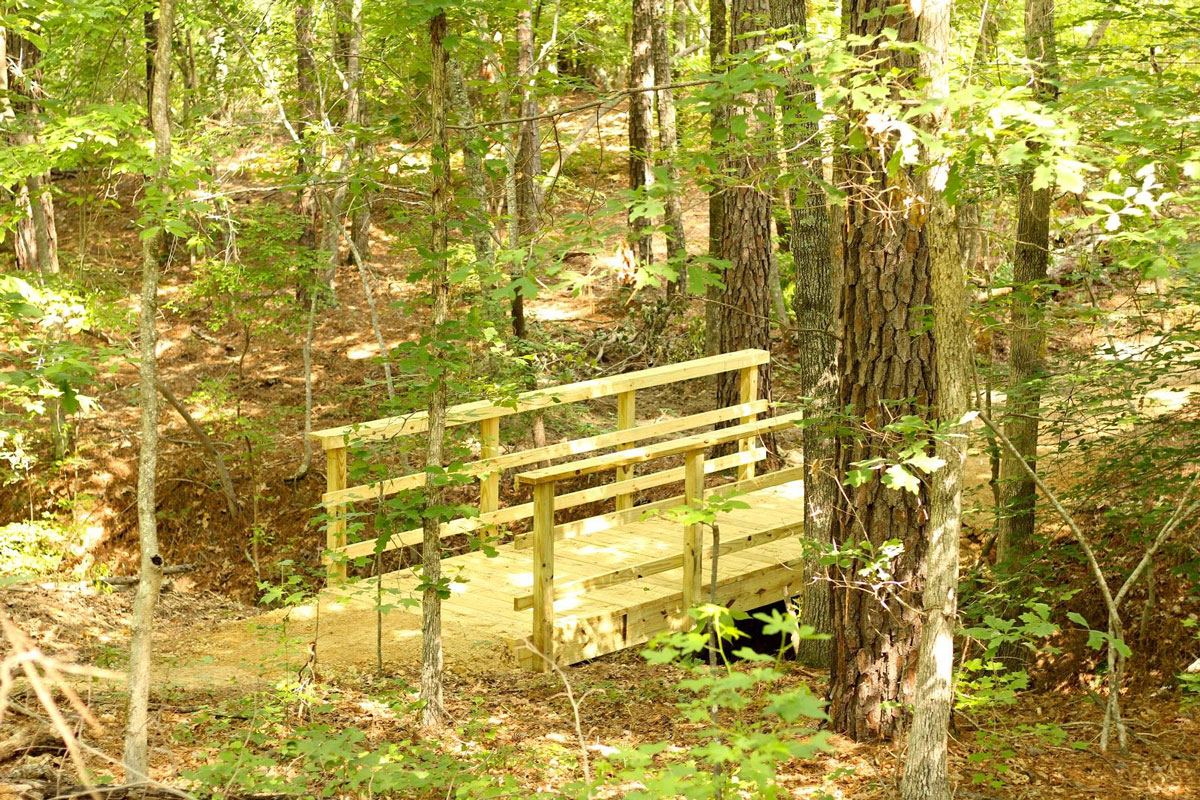 Hiking Trail Design Build | Elevated Trail Design