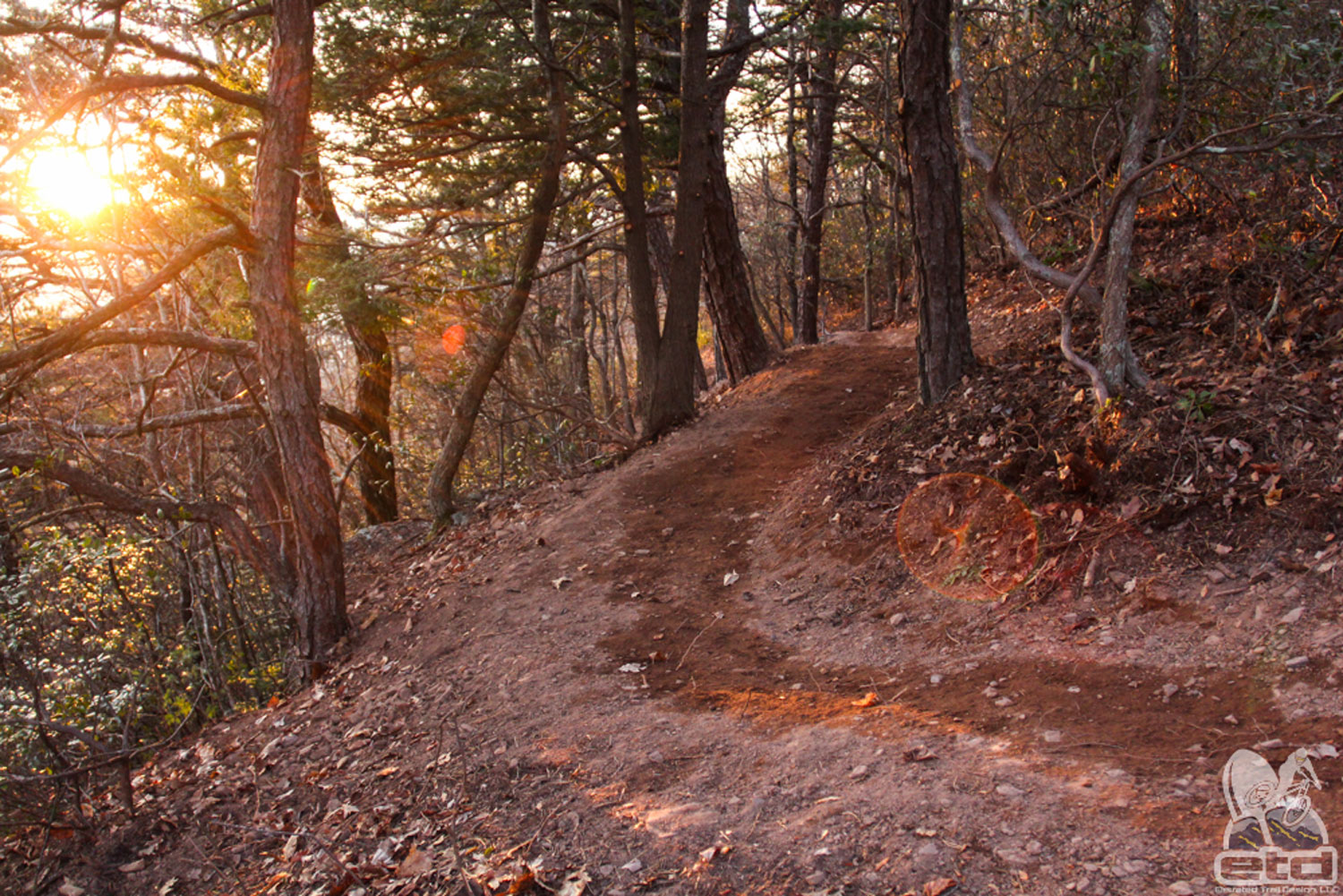 Shenandoah Valley Bicycle Coalition | Elevated Trail Design