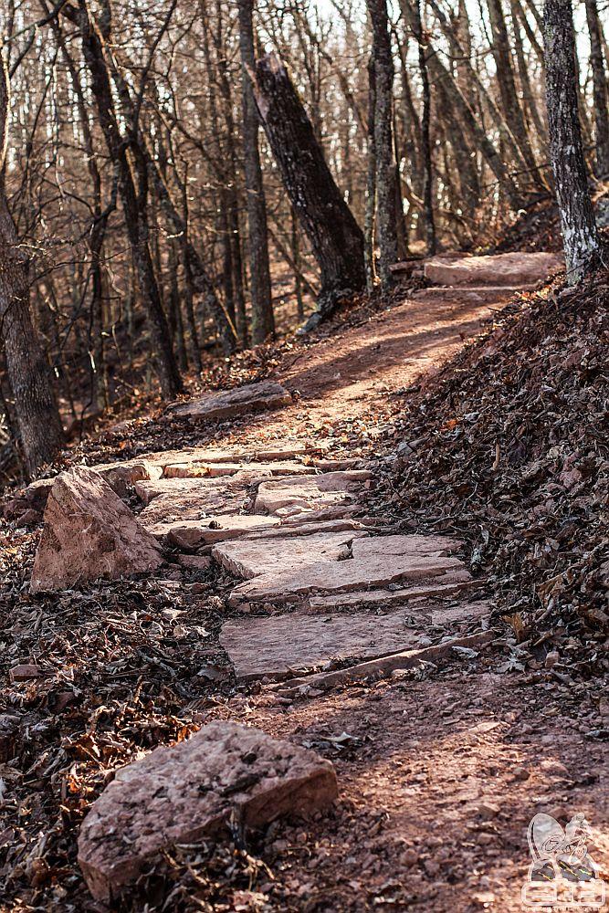 George Washington National Forest | Elevated Trail Design