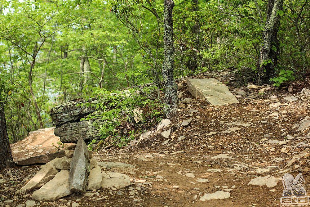 Virginia Trail Builders | Elevated Trail Design