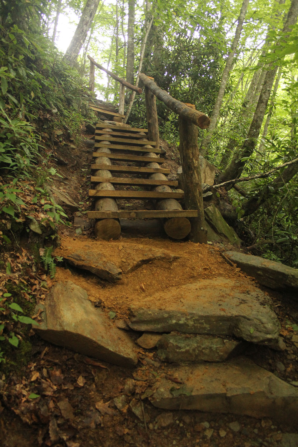 Hiking Trail NC | Elevated Trail Design