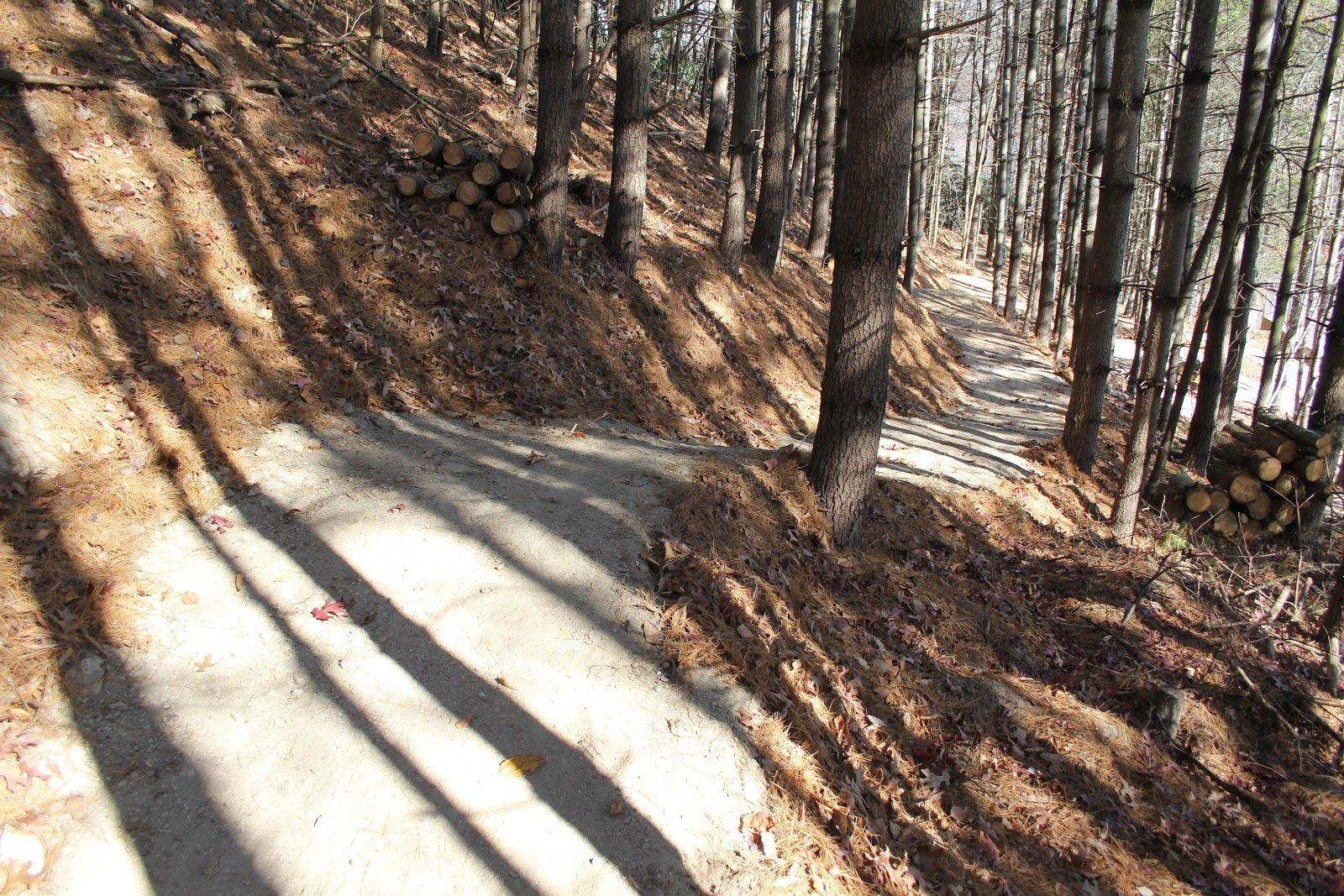Kid Bike Trail Builders | Elevated Trail Design