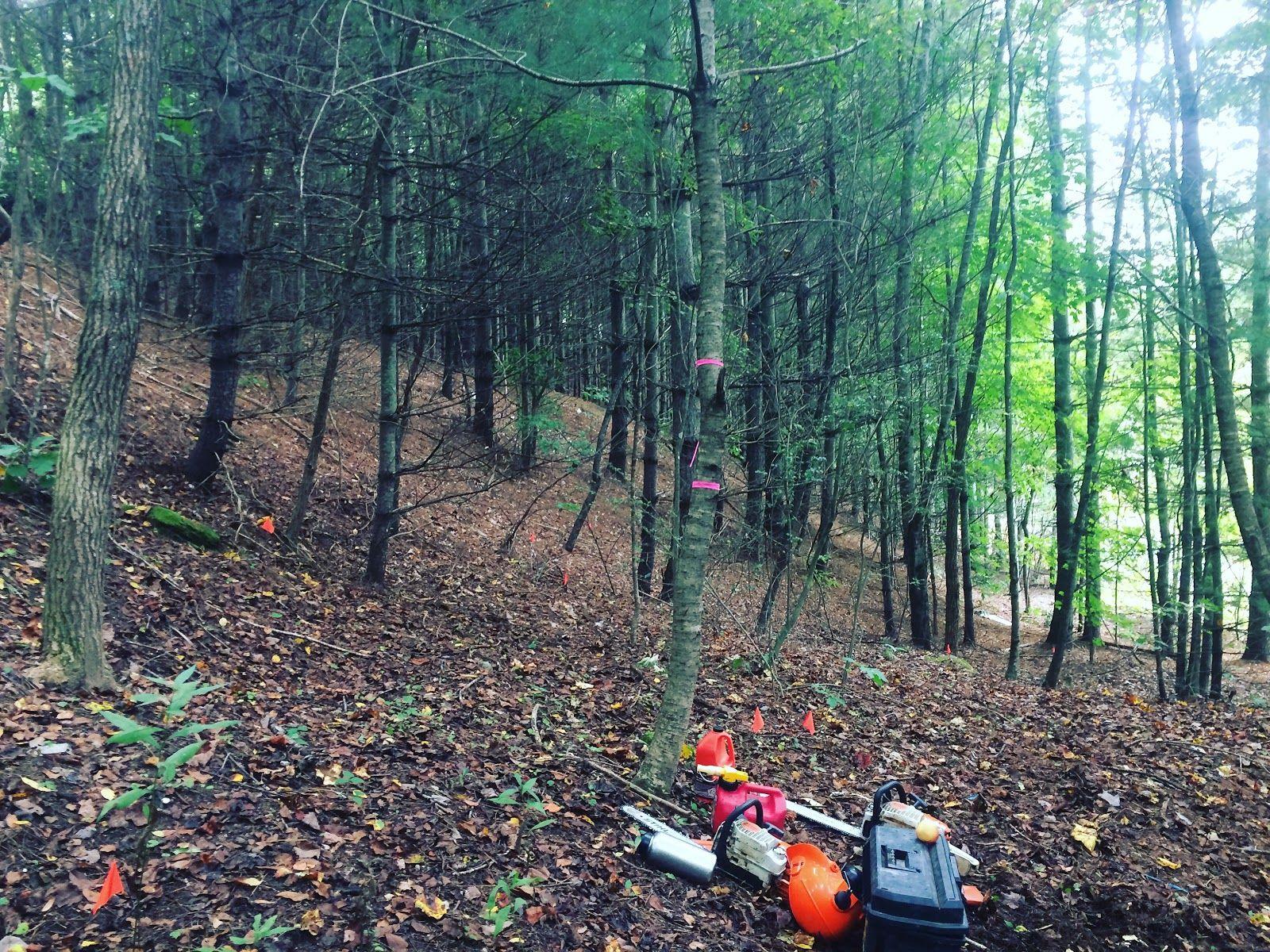 Bike Trail Builders | Elevated Trail Design