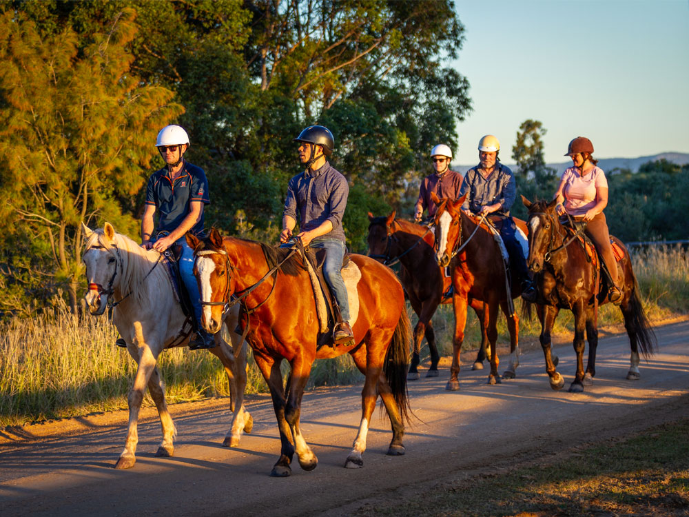 Hunter Valley Wine Tour - Equine Wine Dine Tour
