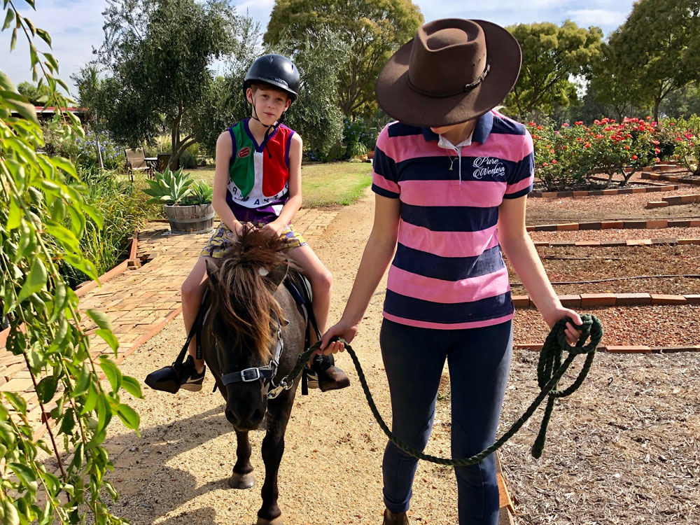 Hunter Valley Tour - Pony Rides