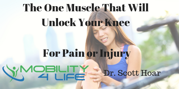 The One Muscle That Will Unlock Your Knee For Knee and Meniscus Pain or Injury.png