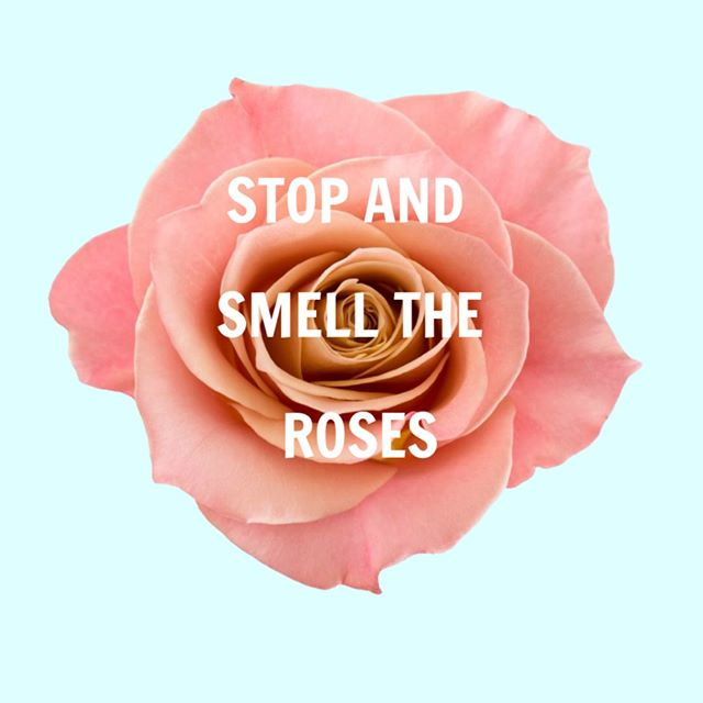 A gentle reminder to stop and smell the roses today. Take time out just for you - your mind and body will thank you for it.⠀⠀⠀⠀⠀⠀⠀⠀⠀ .⠀⠀⠀⠀⠀⠀⠀⠀⠀ .⠀⠀⠀⠀⠀⠀⠀⠀⠀ .⠀⠀⠀⠀⠀⠀⠀⠀⠀ .⠀⠀⠀⠀⠀⠀⠀⠀⠀ .⠀⠀⠀⠀⠀⠀⠀⠀⠀ #ymag #womenempowerment #global #ywoman #sharmoore #empoweringwomen #love #dailyinspiration #inspire #ystory #womeninbusiness #magazine #empowerment #leadership #inspo #conference #empower #yawards #yfactor #event #goldcoast #sunday #selfcare