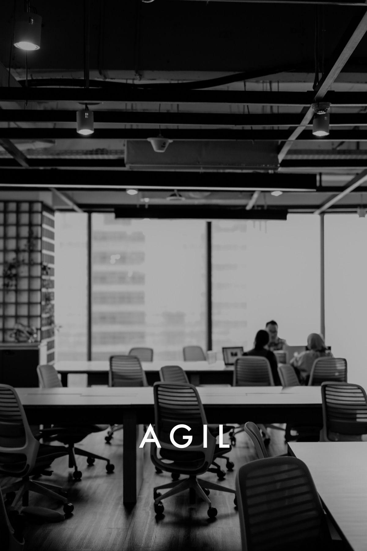 agil_duo_sales_opt.jpg