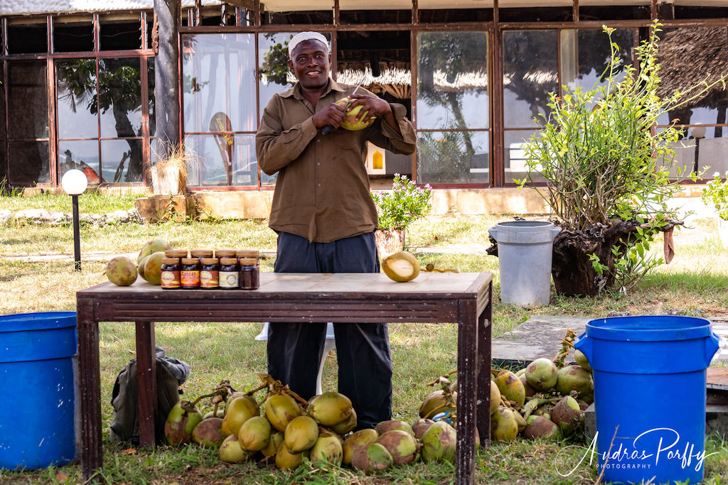 fresh coconuts for sale stand