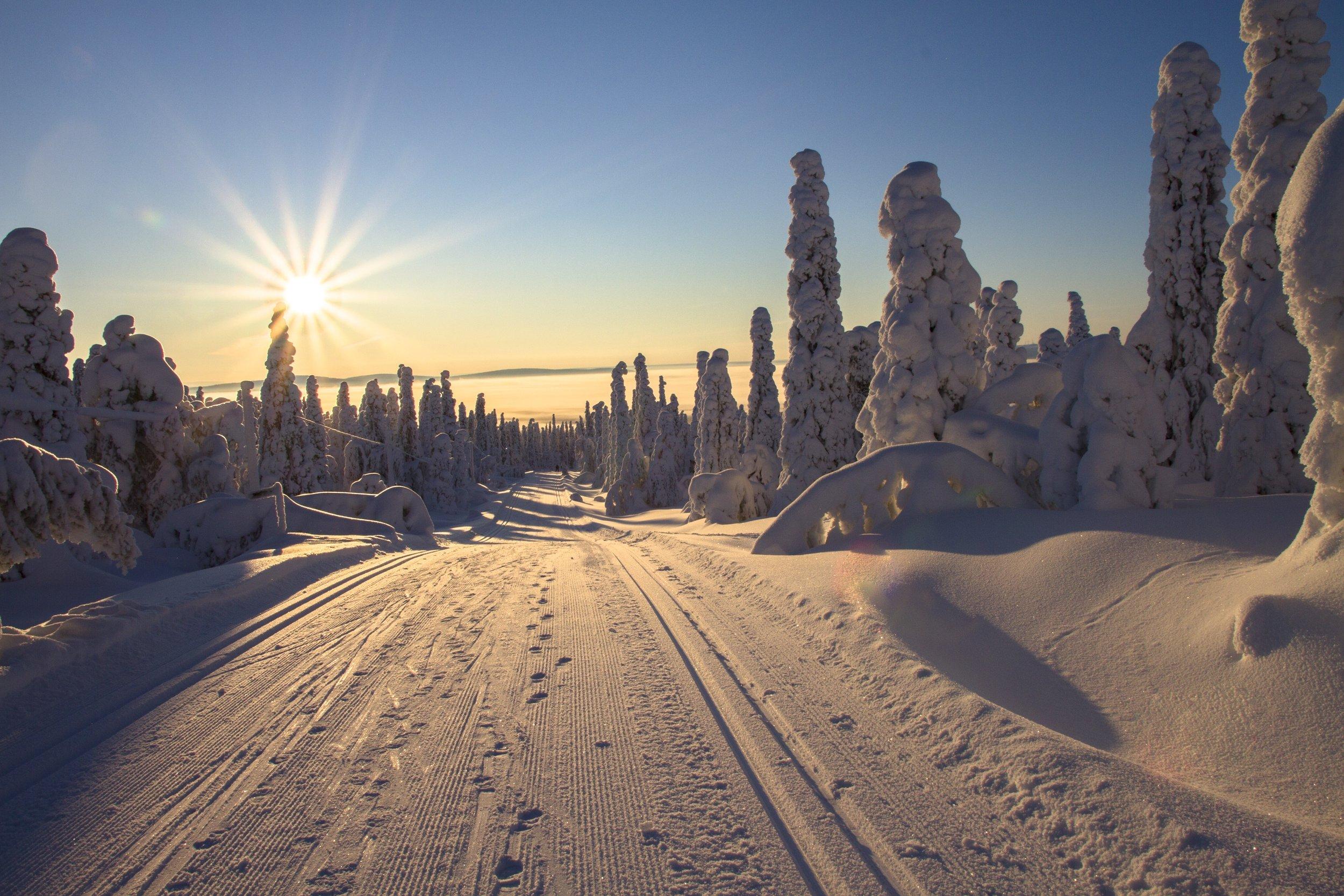 Tornedalsloppet cross-country ski race Övertorneå