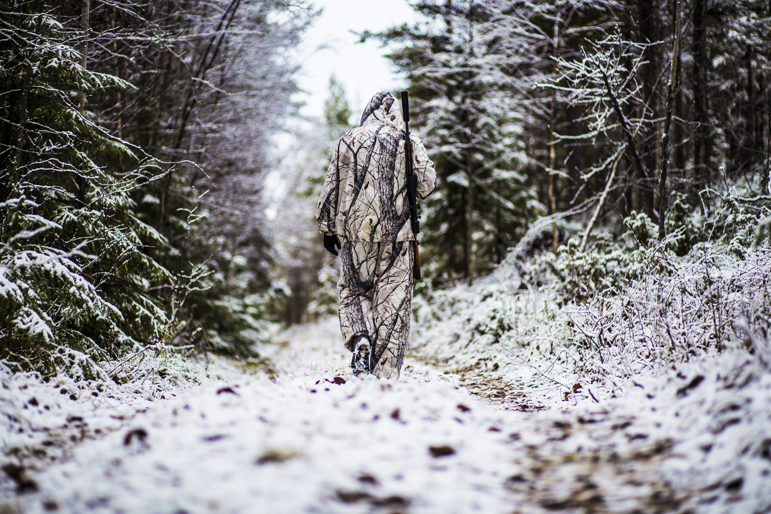 Forest hunting Rantajärvi Vildmark Övertorneå