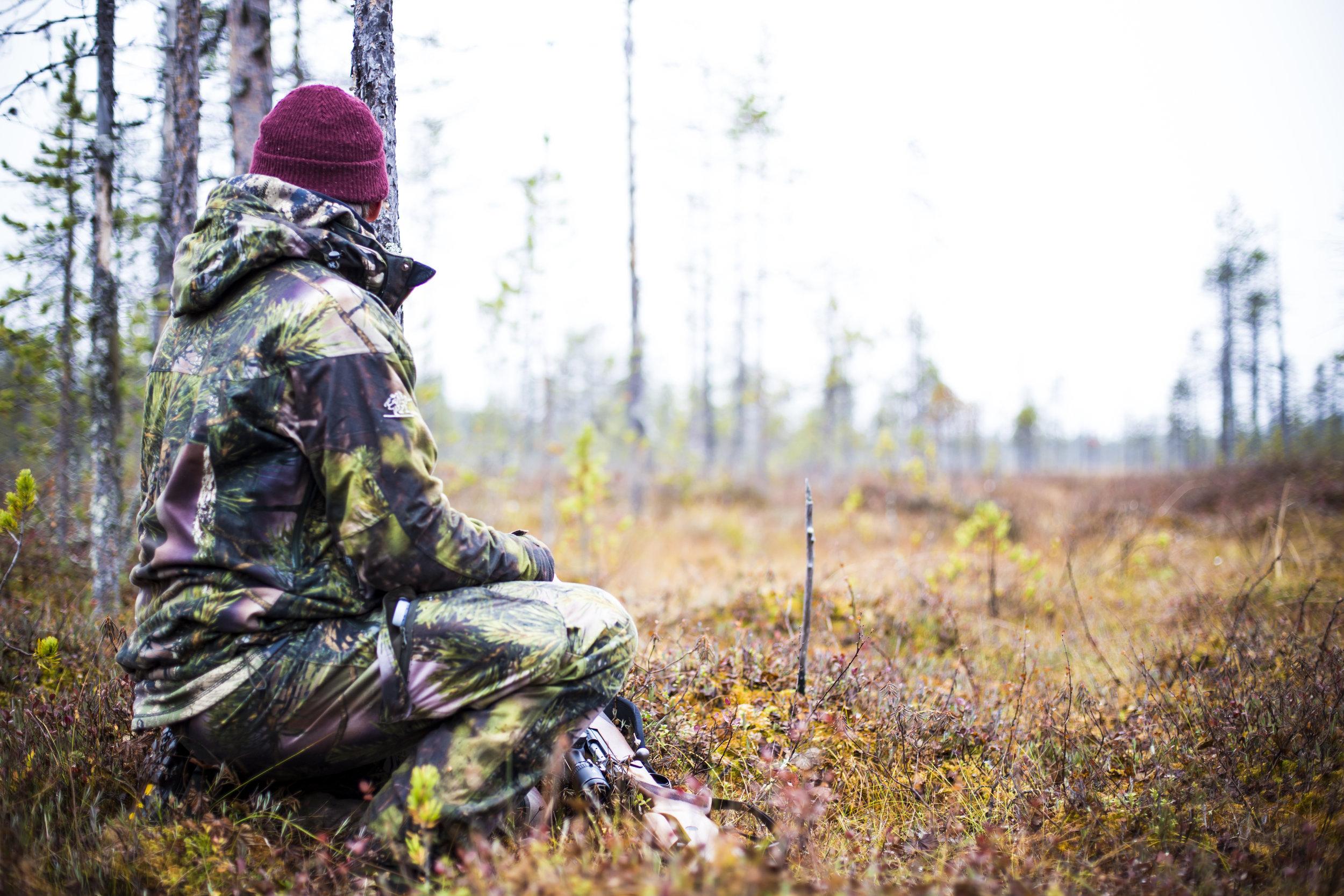 Hunting autumn fall Vitsaniemi Gård Övertorneå