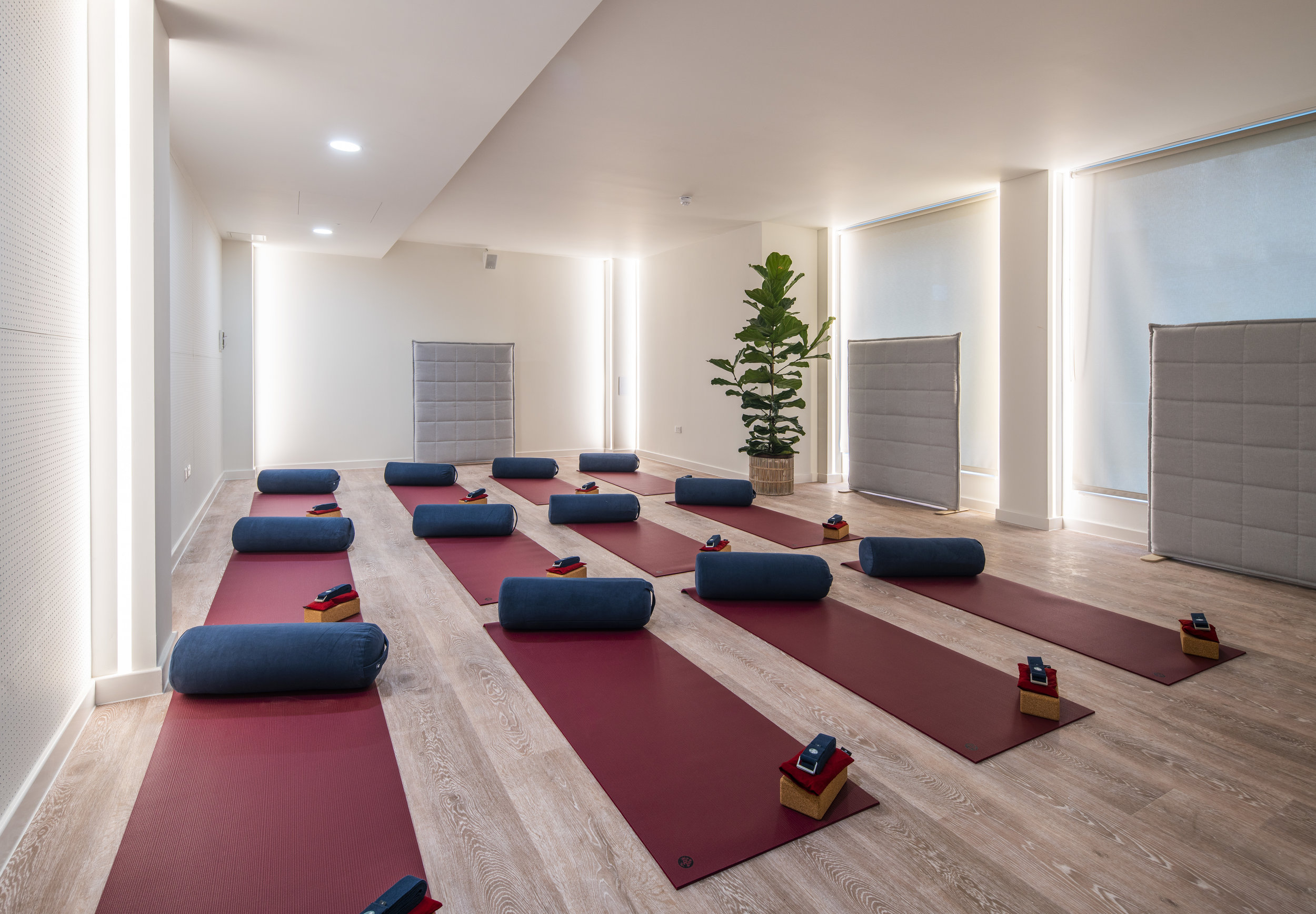 WELLNESS STUDIO -