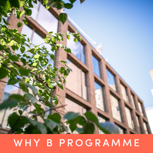 Find out more about the Why B Programme's launch