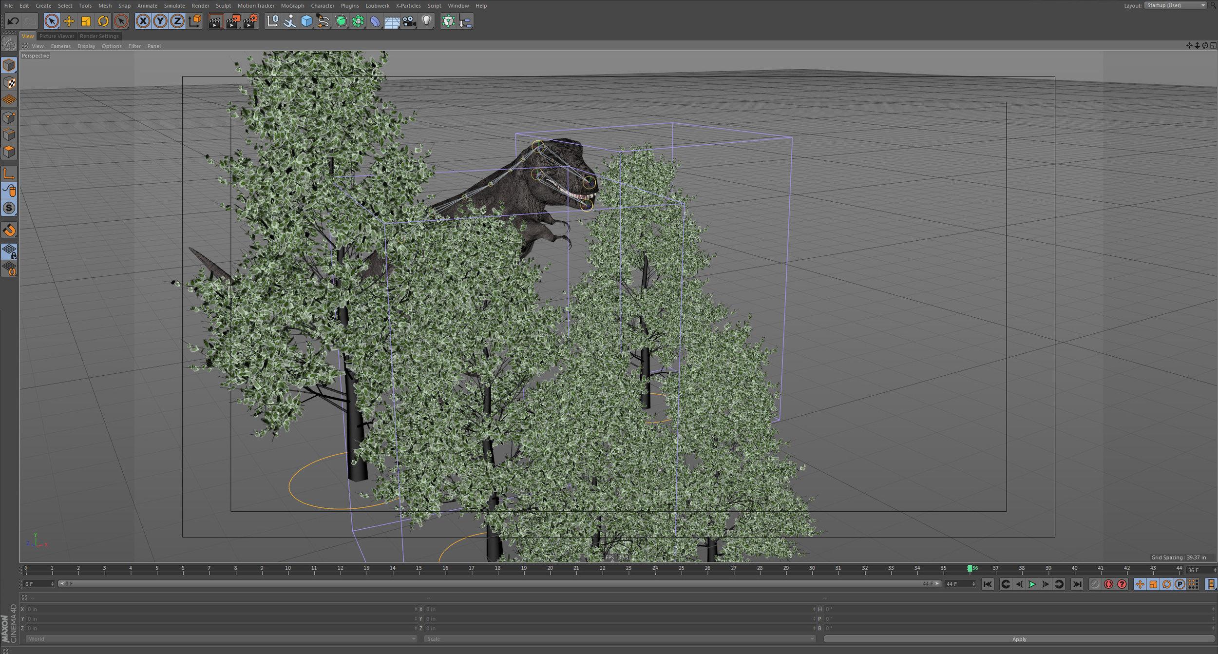 TH_Trex Trees.jpg