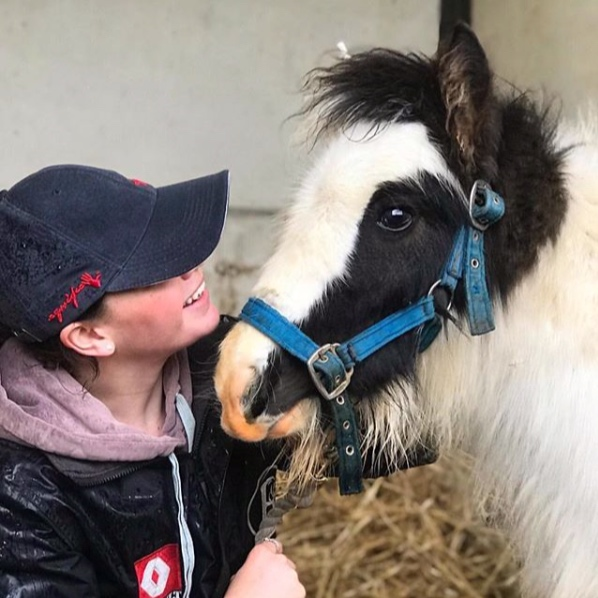Squeak enjoying some love and attention at Help for Horses UK