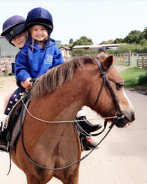 A happy Boggle now rehomed in a local riding school by Help for Horses UK charity