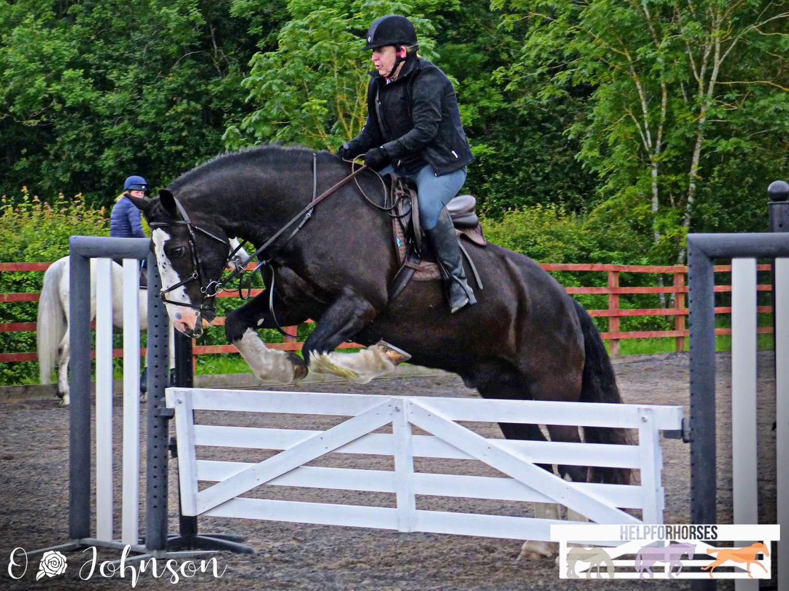 Gate Jumping Event at Gamston Wood Equestrian.jpeg
