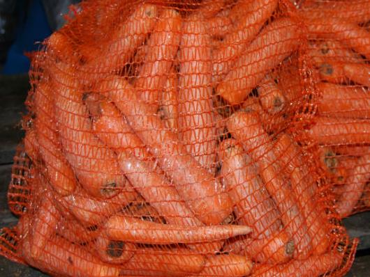Horse carrots.jpg
