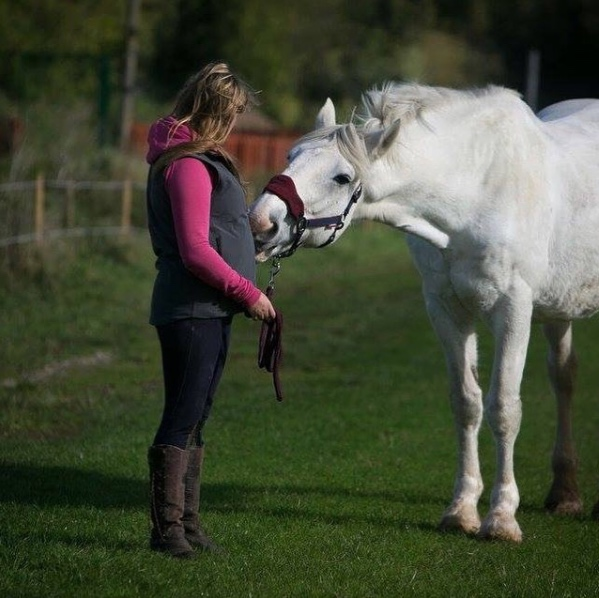 Noble and his new owner at Help for Horses UK charity