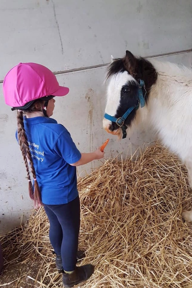 Squeak making a friend at Help for Horses UK