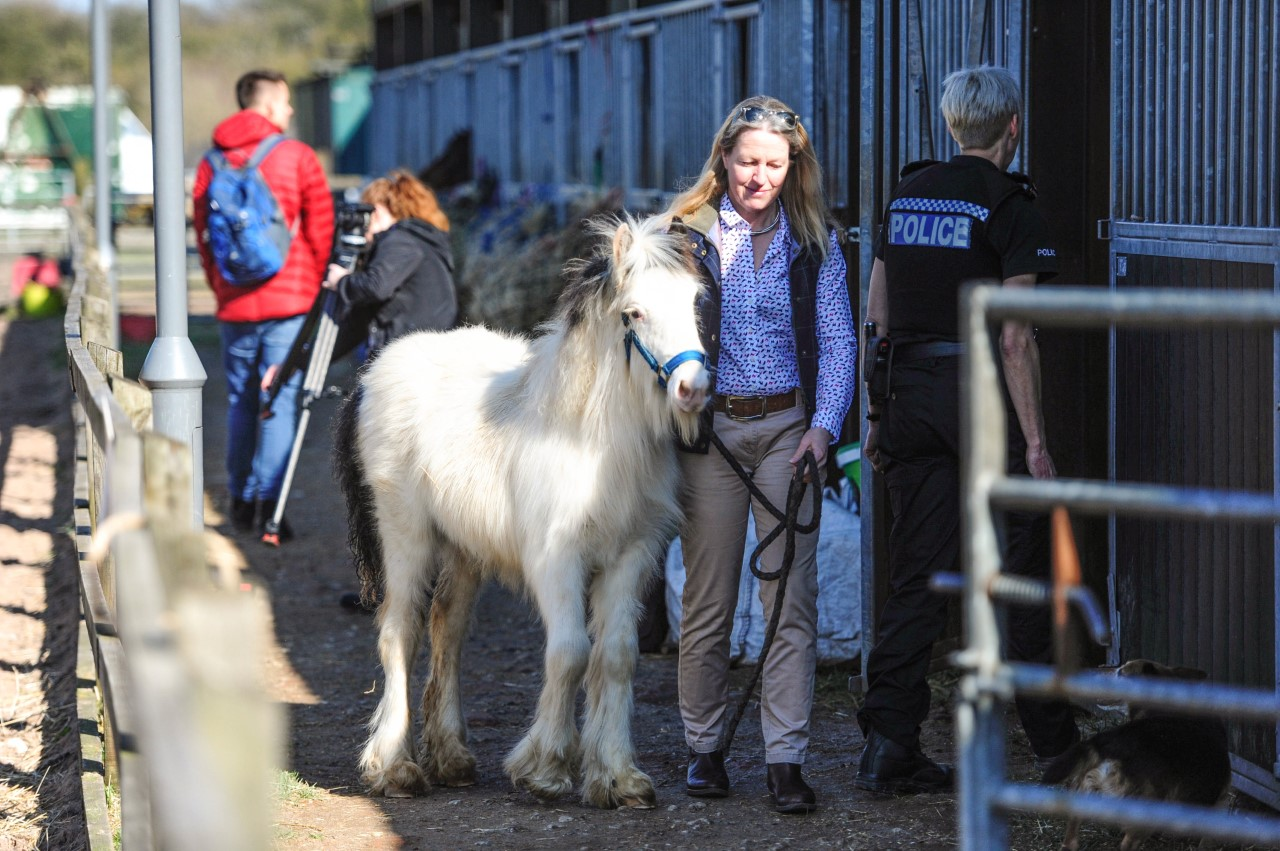 Working closely with the Police and Nottinghamshire Police Horse Watch to raise awareness.