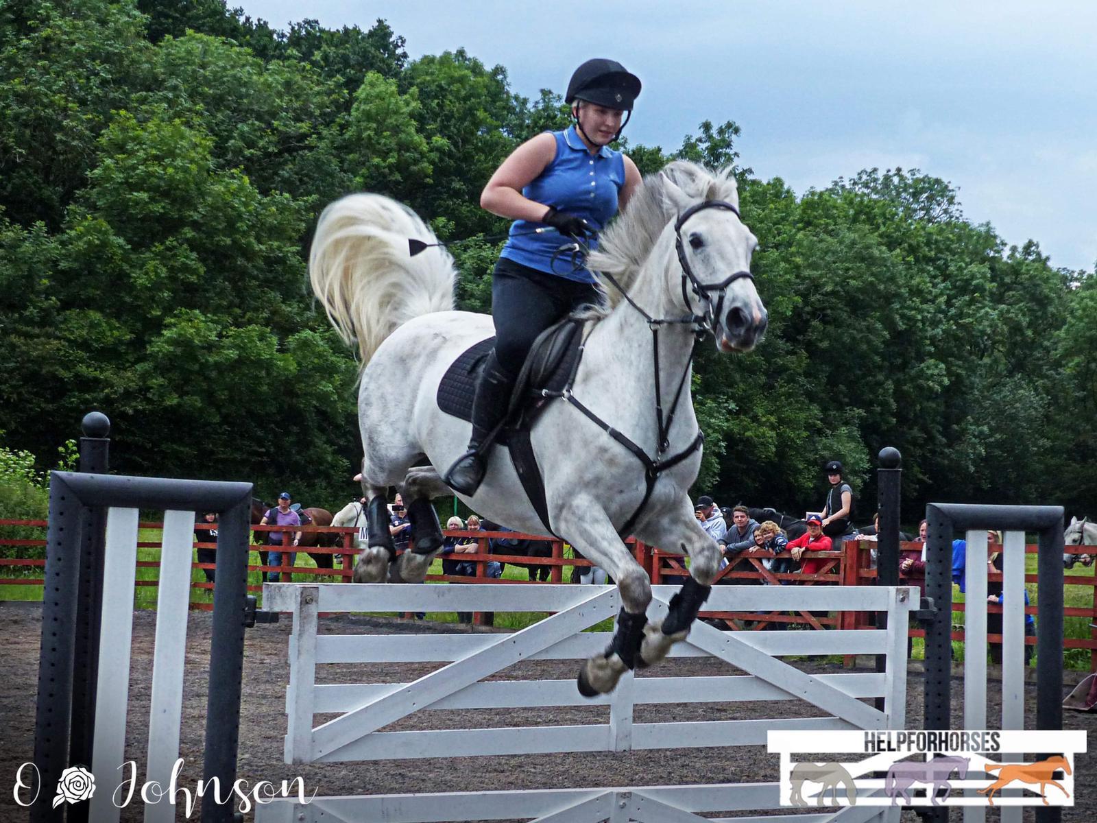 Gate Jumping Event at Gamston Wood Livery Ltd.jpg
