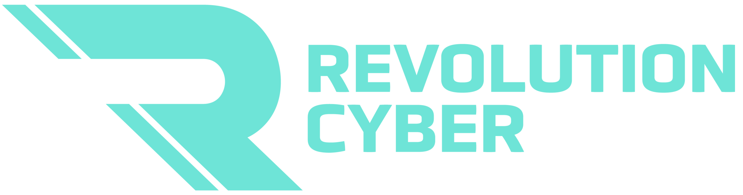 revcyber-logo-main-teal-horz.png
