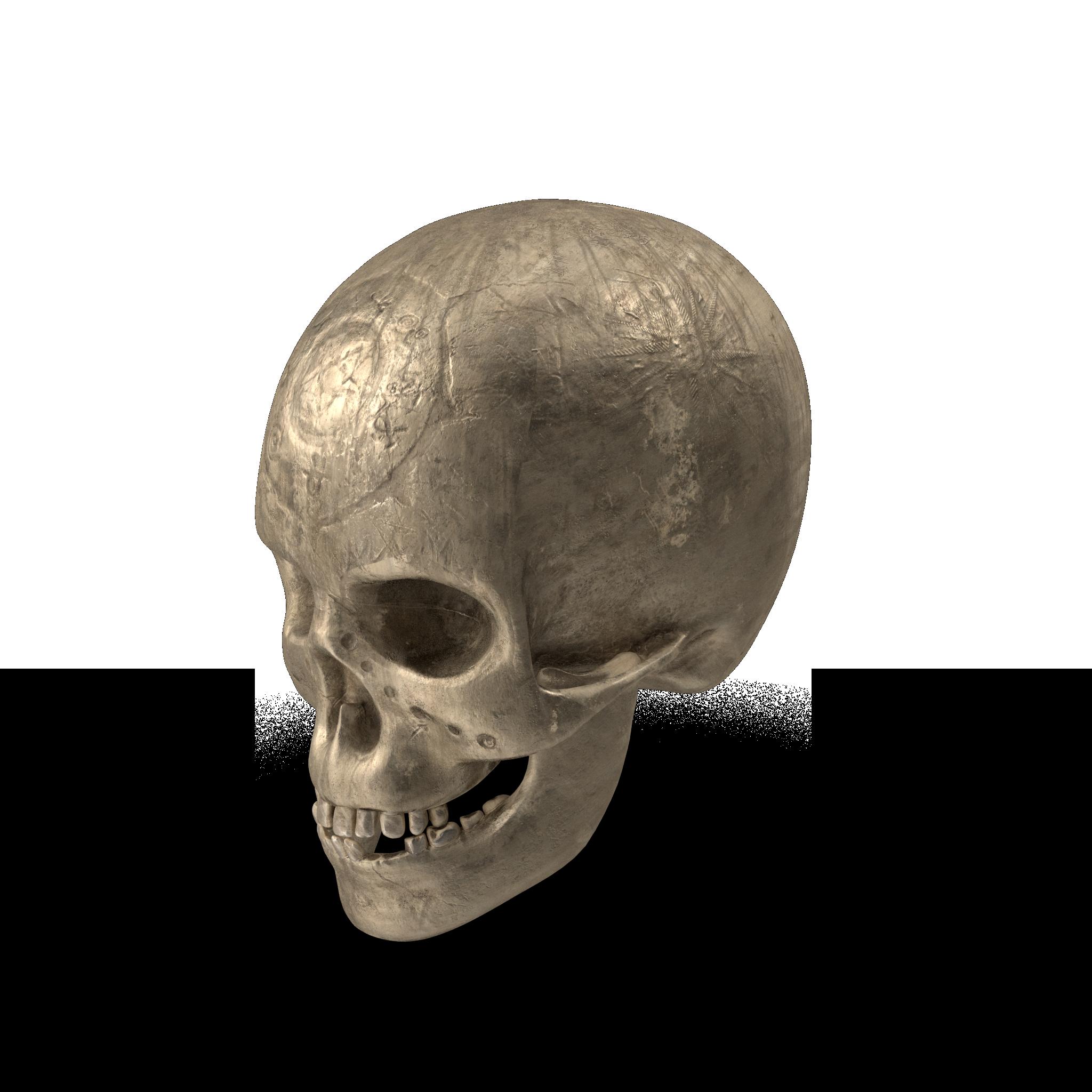 Ancient%20Skull.H03.2k.png