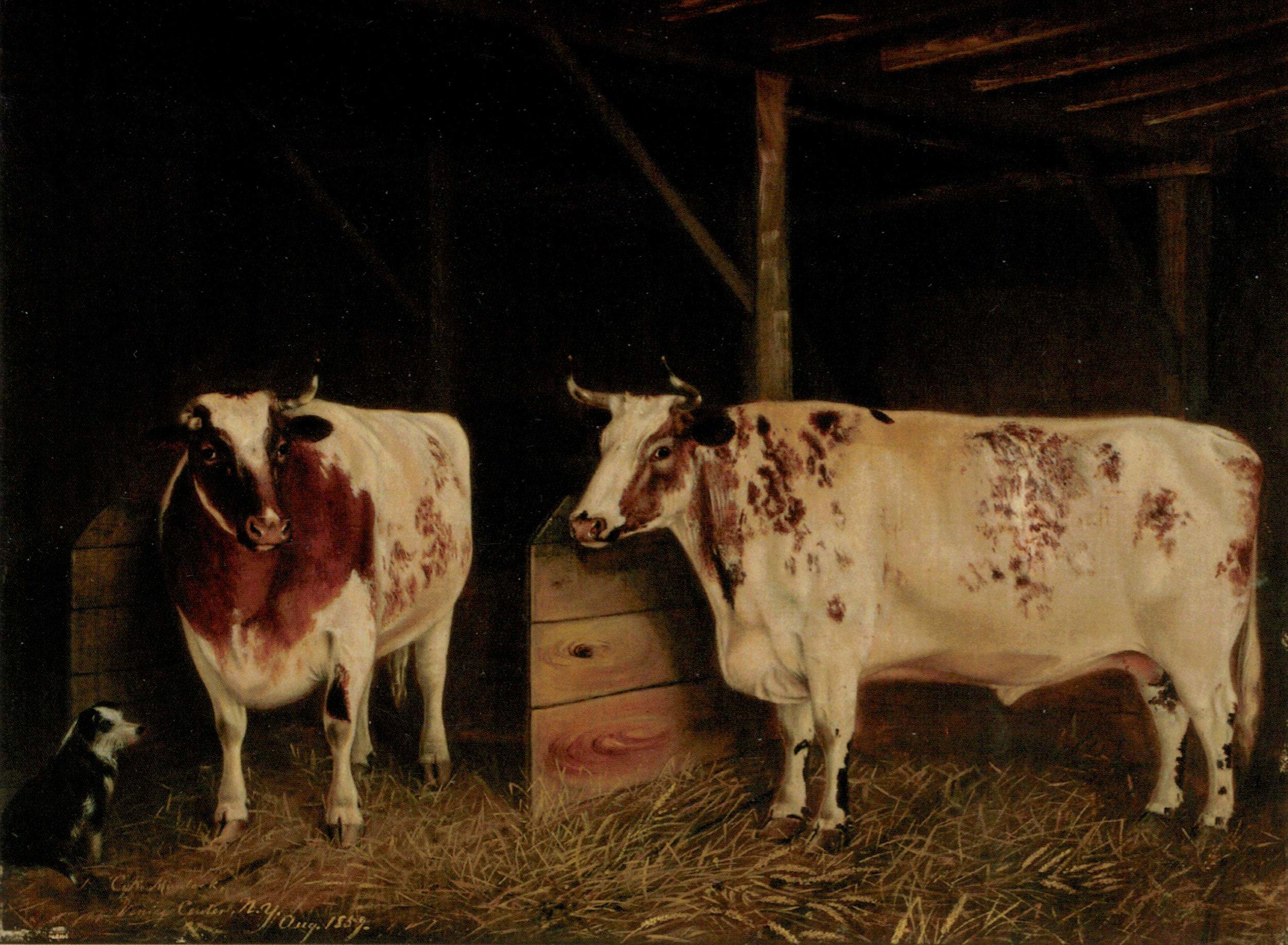 Oxen-painting_web.jpg