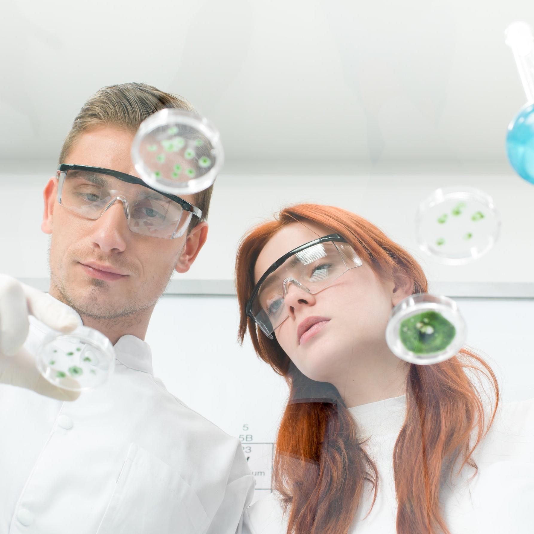 scientists-observing-petri-dish-PUSUJ93.jpg