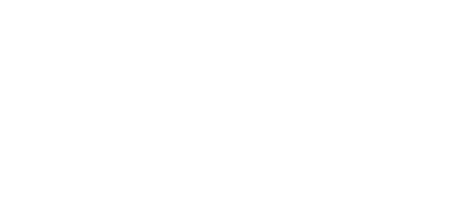 PROJECT & PROGRAM MANAG WHITE.png
