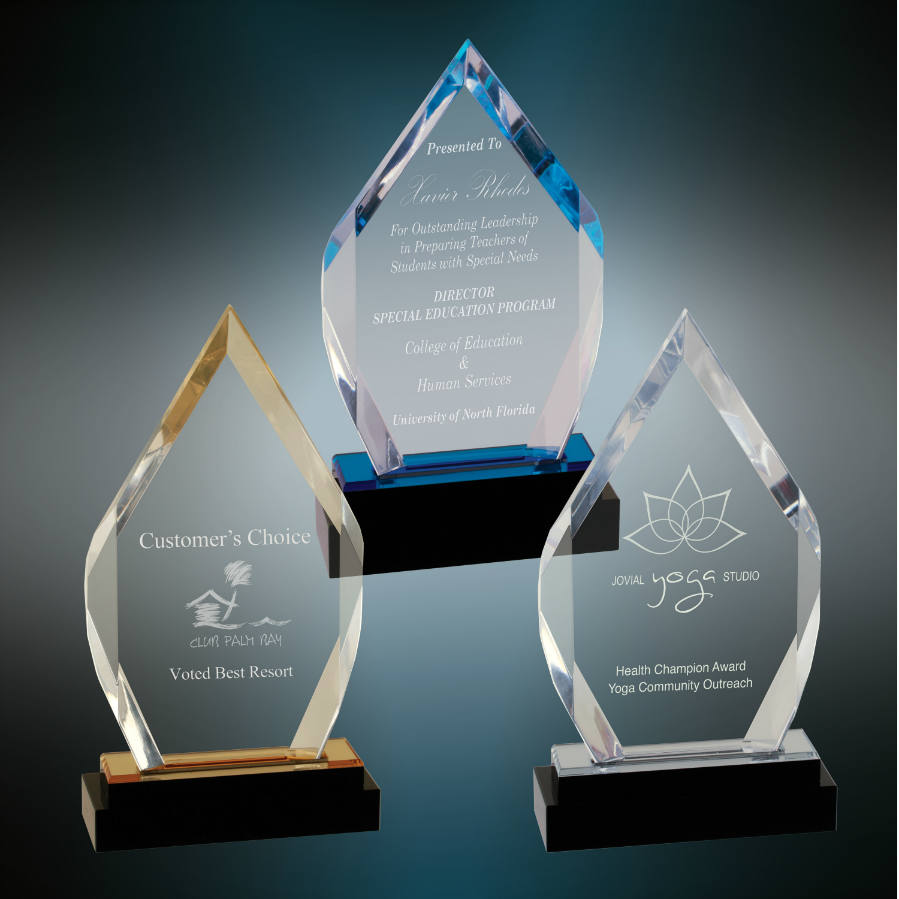 Professional Recognition Awards ($75-125 ea.)