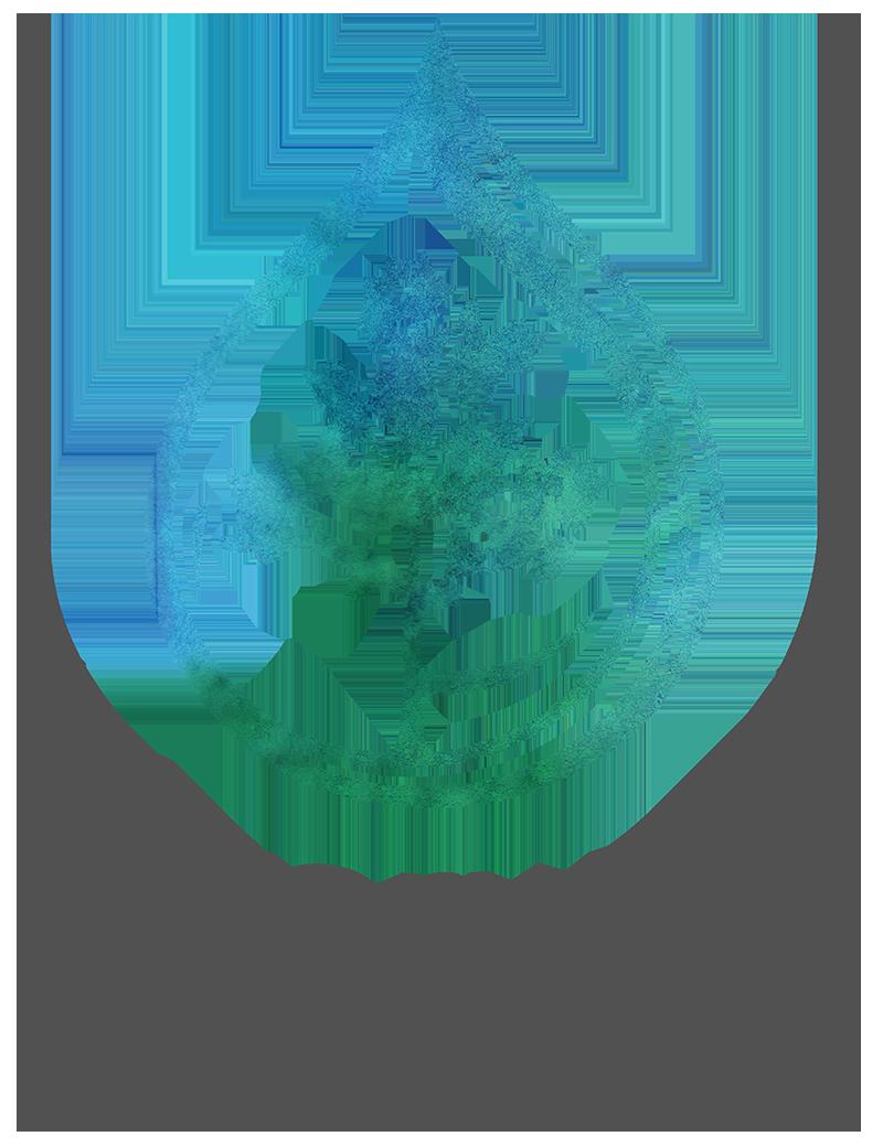 everwell_logo_color_medium.png