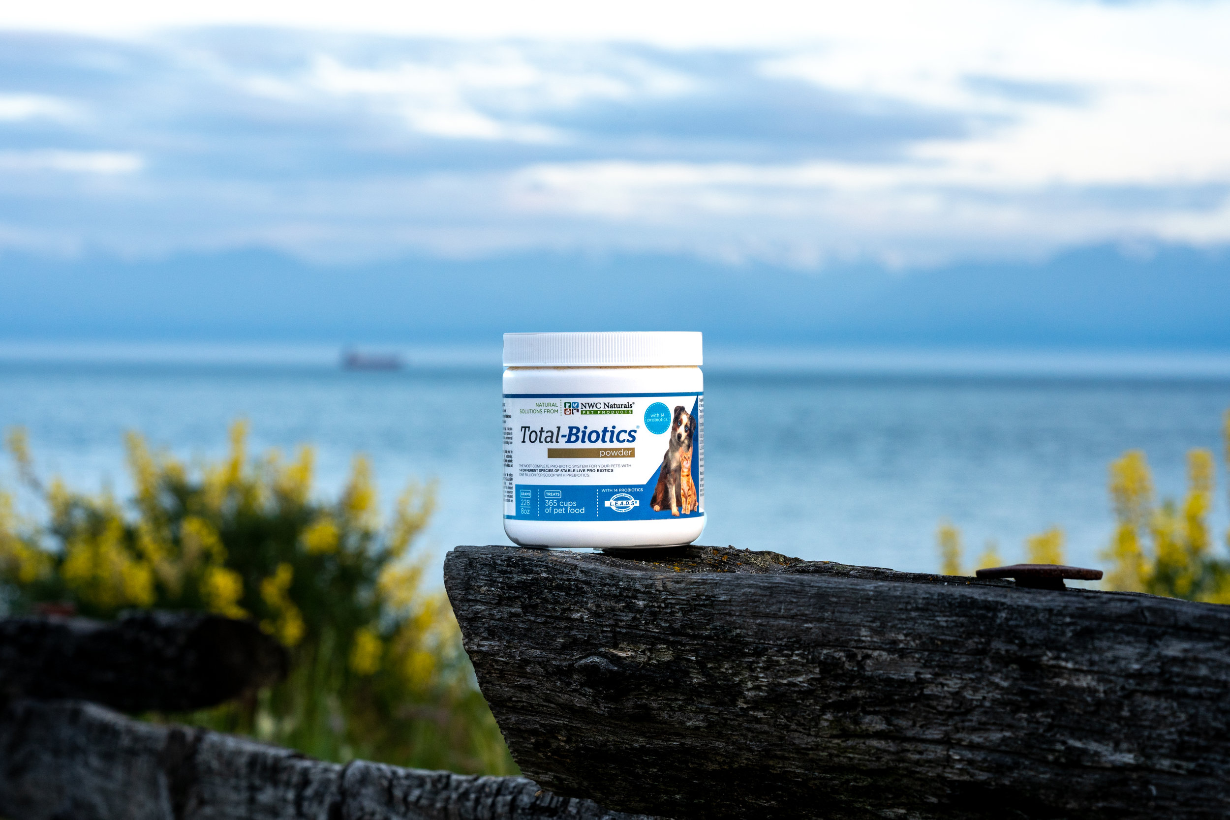 Total-Biotics® - Healthy DigestionThis is one of our most popular products. With the best quality, you can rest assured that we have what you need.
