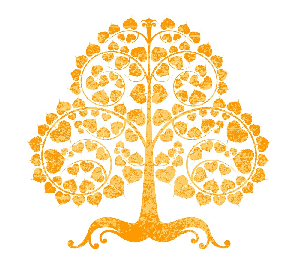 bodhi-tree-on-a-white-background-vector-6118056.jpg