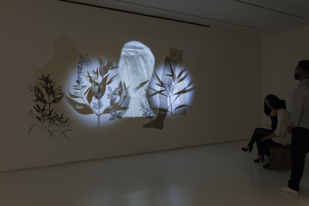 Pastoral,  Mixed Greens, NYC. October 16 - November 15 , 2014. Charcoal, ink, xerox transfer, collage and projected animation on wall. Post-Production Beau Leduc. Photography ©Etienne Frossard.