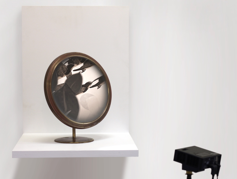 Chimera (with Mirror), 2017, Projected stop-motion animation on found mirror, Duration: 26:22, Edition varié of 5, 12 x 10 inches.